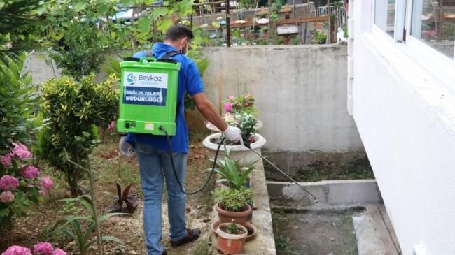 Sivrisinekle Vatandaş-Belediye Topyekûn Mücadele