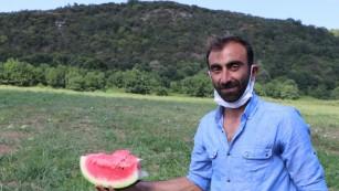 BEYKOZ'DA KARPUZ HASADI BAŞLADI!..