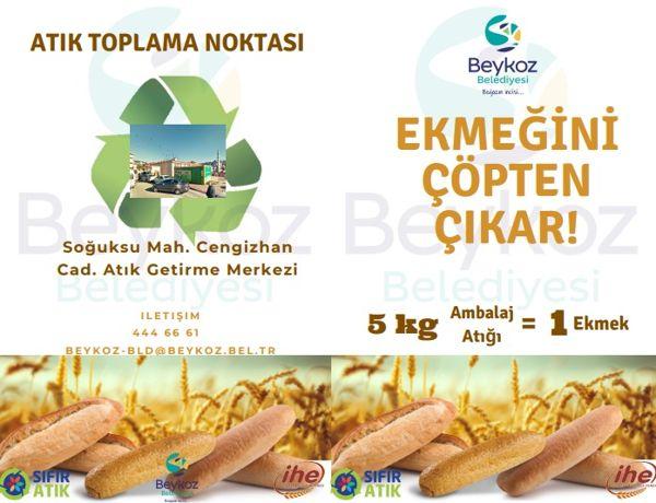 Ekmeğini Çöpten Çıkart (1)