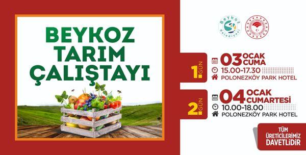 Beykoz Tarım Çalıştayı 2019 (3)