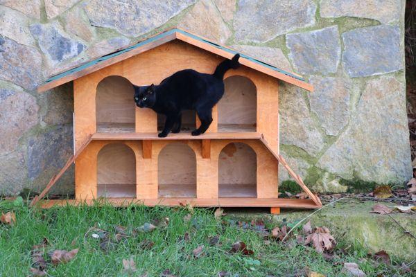 Kedi Evleri (4)