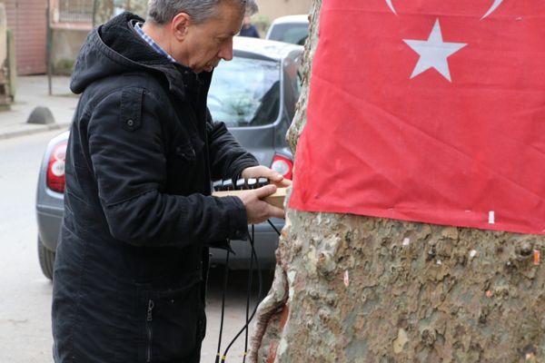 Anıt Ağaç Ölçüm Çalışmaları (6)