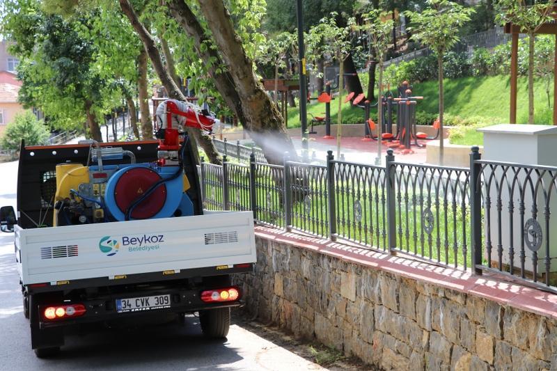 Sivrisinek İlaçlama Çalışmaları (7)